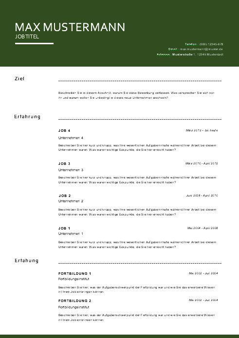 Vorlage / Muster 2016 Lebenslauf