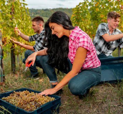 Jugendarbeitsschutzgesetz: Die Grundregeln